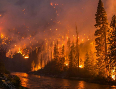 JD-SLQX森林气象站防范森林火灾